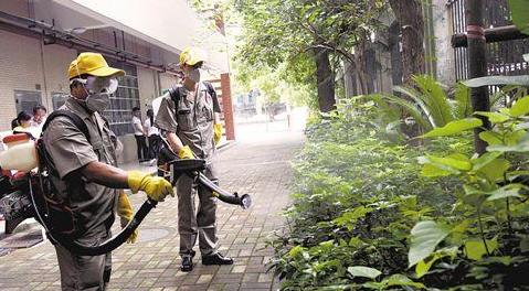 专家建议广州灭蚊工作可提前在每年2-3月份启动