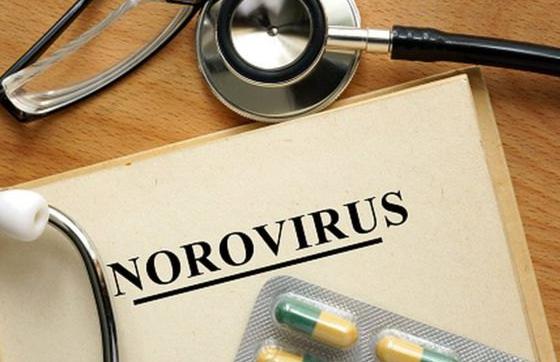 出境游提醒:莫乱吃小心感染诺如病毒