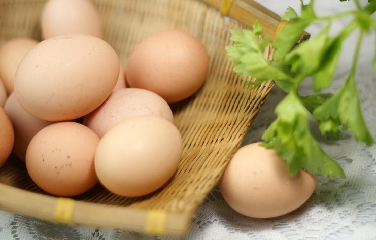 美国召回逾2亿枚鸡蛋多州暴发沙门氏菌疫情