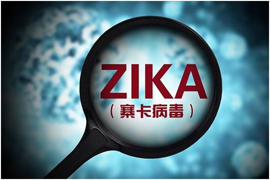 寨卡病毒7个致病蛋白初步确认