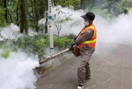 广东省疾控中心:17地市已出现登革热本地病例疫情