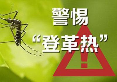 柬卫生部预警:预防今年或将爆发的登革热