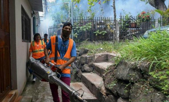 洪都拉斯登革热疫情严重今年至少造成51人死亡